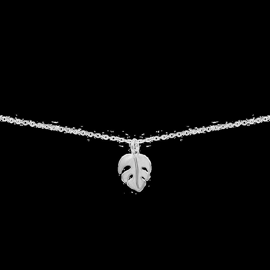 Collar con colgante en forma de hoja de mostera o costilla de Adán en plata